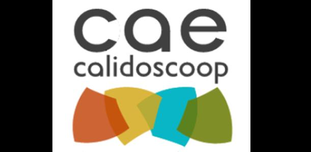 Logo CAE.png