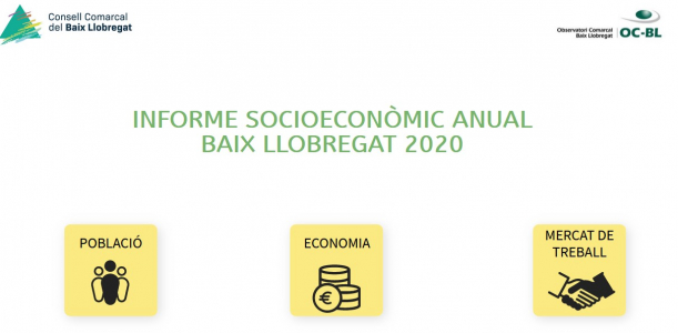 Informe anual socioeconòmic