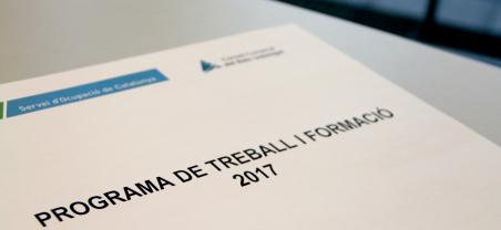 23 persones han finalitzat la seva contractació del programa Treball i Formació al mes de juliol passat