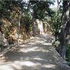 Camí de Gaudí